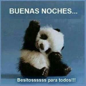 Buenas Noches Panda Bebe Animales Bonitos Animales Bebes
