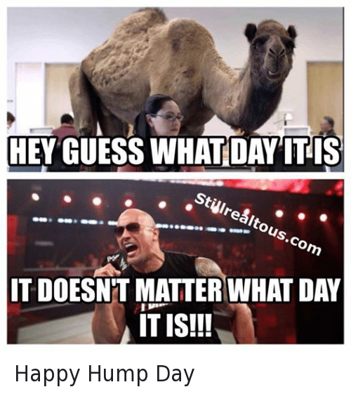 Hey guess what day it is it doesnt matter Hump Day Work