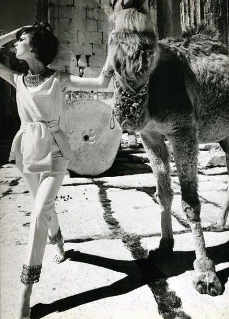 Dorothea McGowan & Camel, Baalbek, 1962, © William Klein
