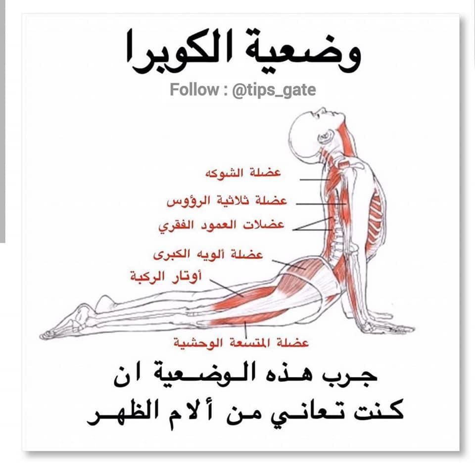 Pin By Ghani Souyah On Workout Health Facts Fitness Health And Fitness Magazine Fitness Workout For Women