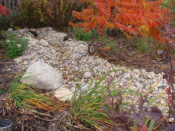 How To Build A Dry Stream Bed State By Gardening Web Articles