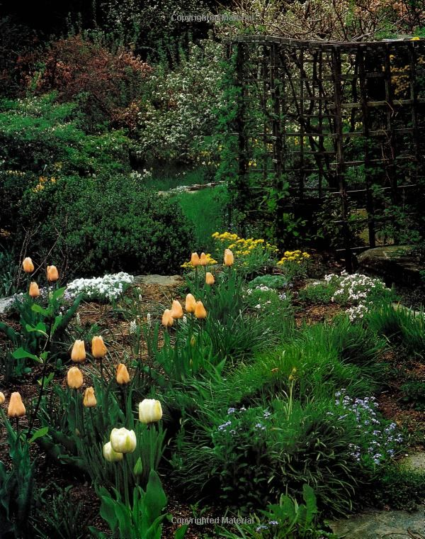 Amazon Com Tasha Tudor S Garden 9780395436097 Tovah Martin