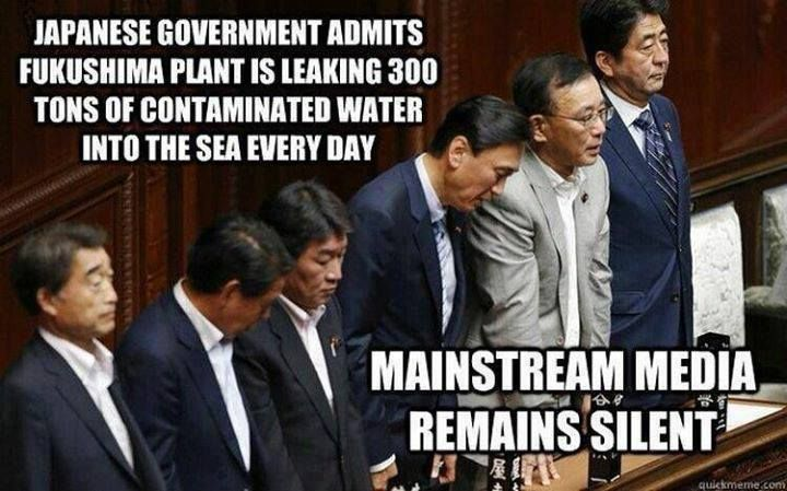 """A puddle of the contaminated water was emitting 100 millisieverts an hour of radiation, Kyodo news agency said. Masayuki Ono, general manager of Tepco, told Reuters : ""One hundred millisieverts per hour is equivalent to the limit for accumulated exposure over five years for nuclear workers; so it can be said that we found a radiation level strong enough to give someone a five-year dose of radiation within one hour.""  ..and 300 tons of that same water has been pouring into the ocean…"