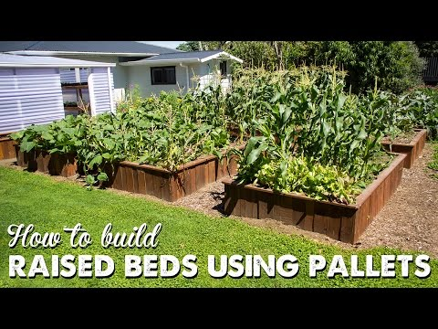 (1750) How to Build Raised Beds Using Pallets (UPDATE
