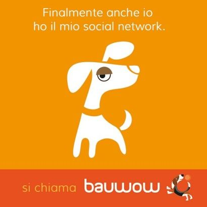 Bauwow: the social petwork !