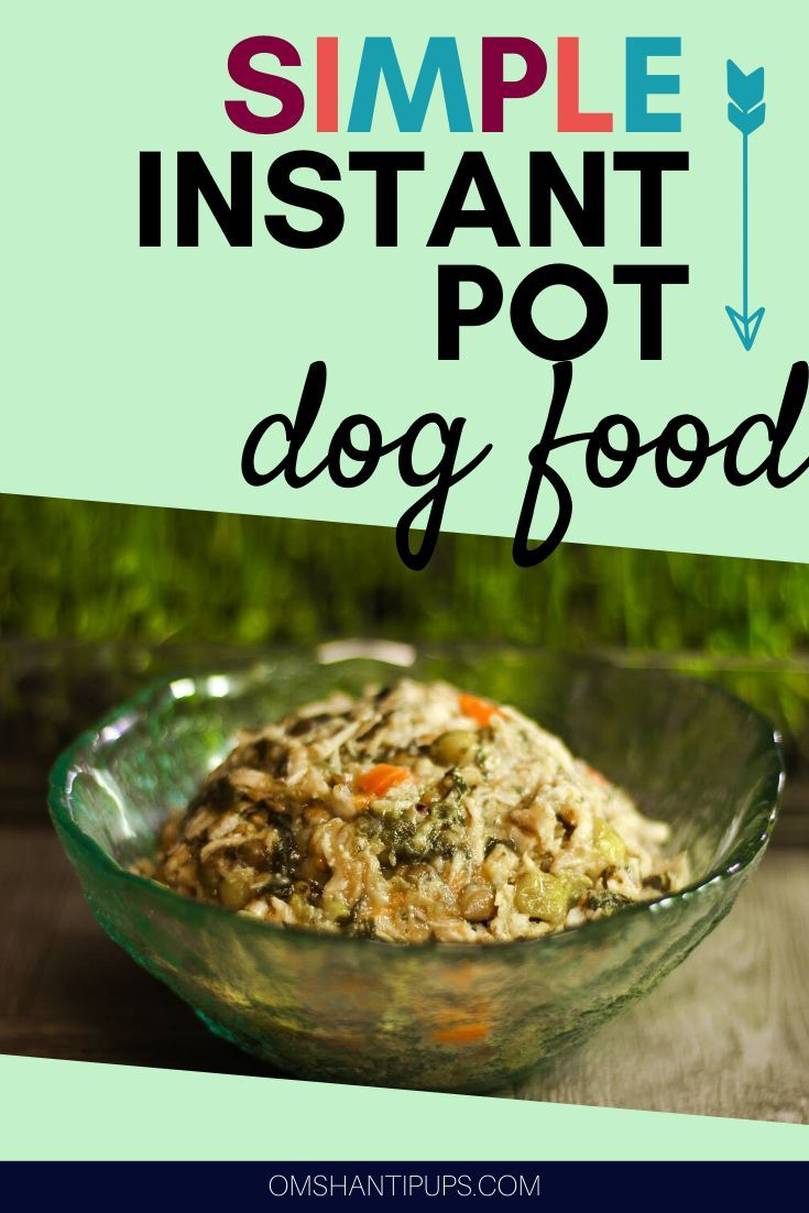 Easy healthy instant pot dog food recipe in 2020