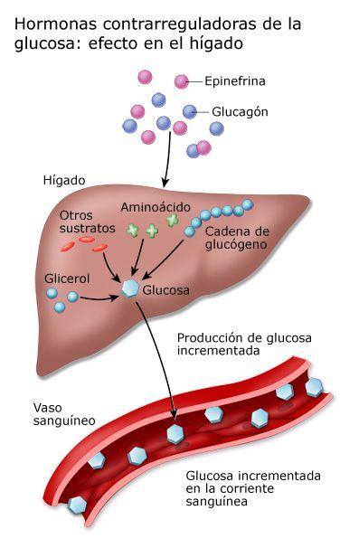 gráfico de niveles de azúcar en la sangre pre diabetes uk
