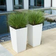 Resultat De Recherche D Images Pour Plante Pot Terrasse