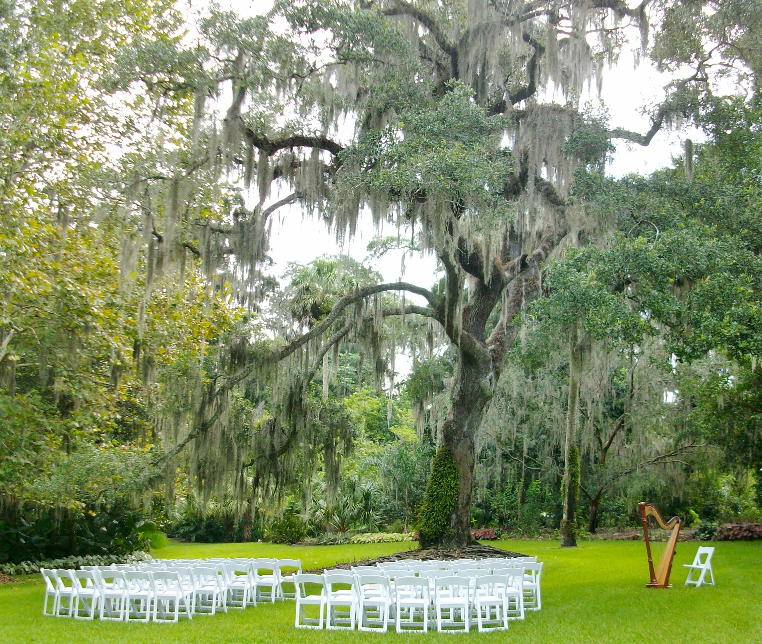 Leu Gardens Wedding Ceremony In Front Of The Leu House In