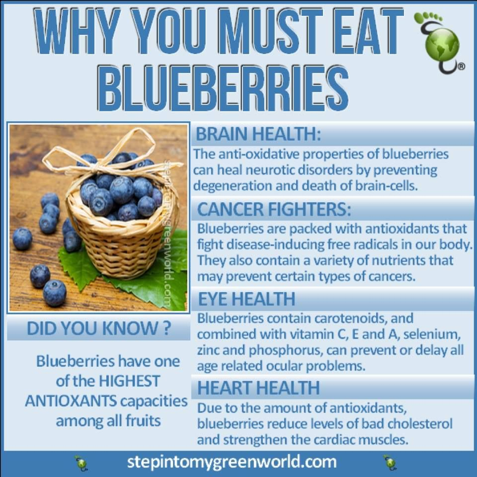 Medicinal Uses for Blueberries to Digestive Health ...   Blueberry Medicinal Uses