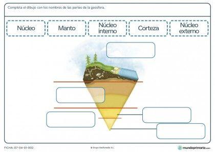 Fichas Para Imprimir Para Niños De Primaria Ciencias De