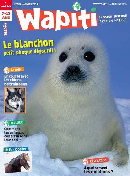 wapiti magazine enfant reportage animalier magazine 7 13 ans magazine wapiti magazines. Black Bedroom Furniture Sets. Home Design Ideas