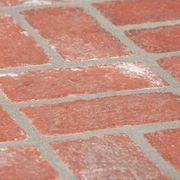 How To Remove Moss From Brick