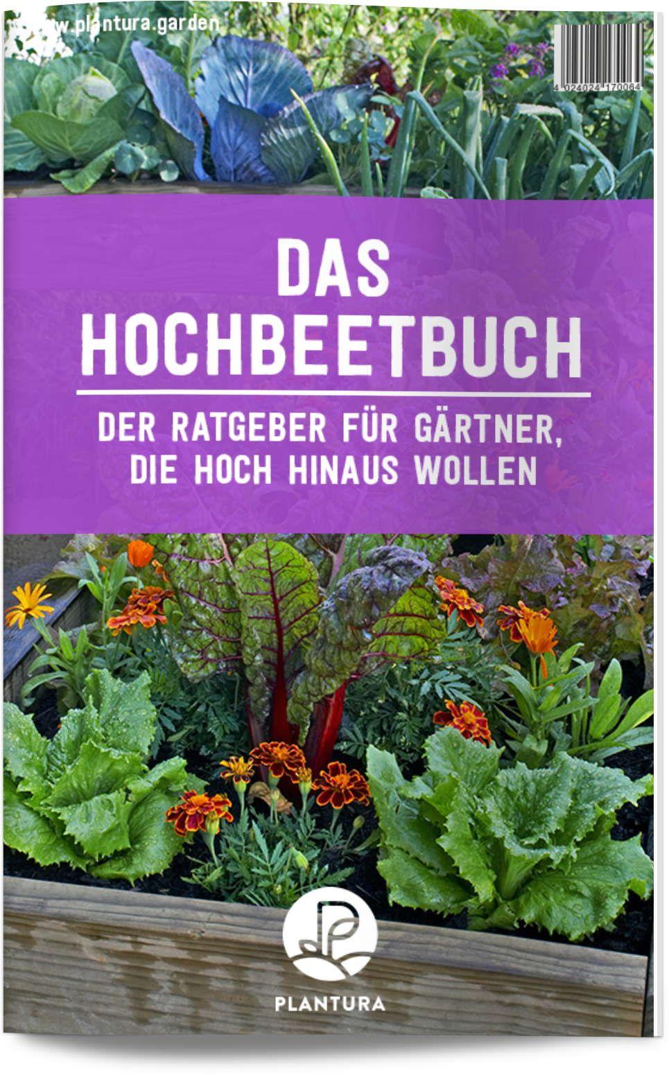 Saatgutversender für altbewährte Sorten: Unsere Top 9 - Plantura