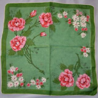 Pink roses on green