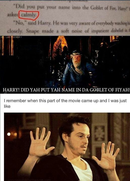 My Reaction Exactly Harry Potter Funny Harry Potter Jokes Harry Potter Obsession