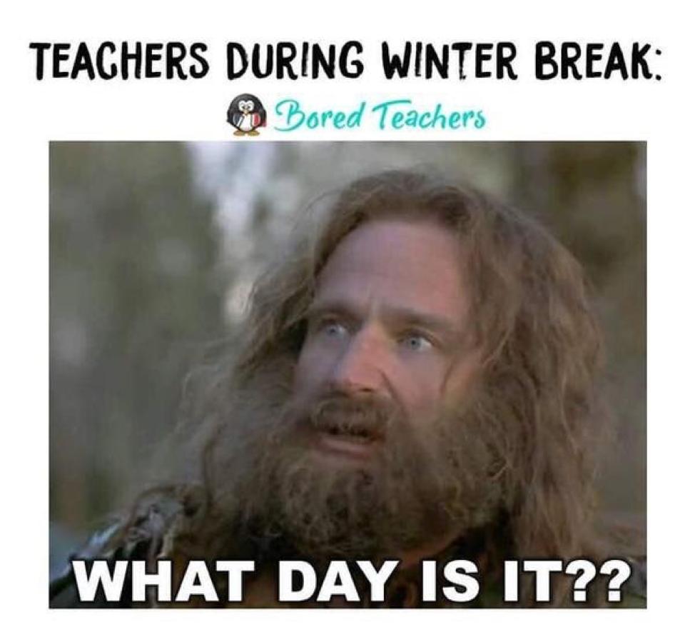 Teachers During Winter Break Bored Teachers Teacher Jokes Teacher Memes