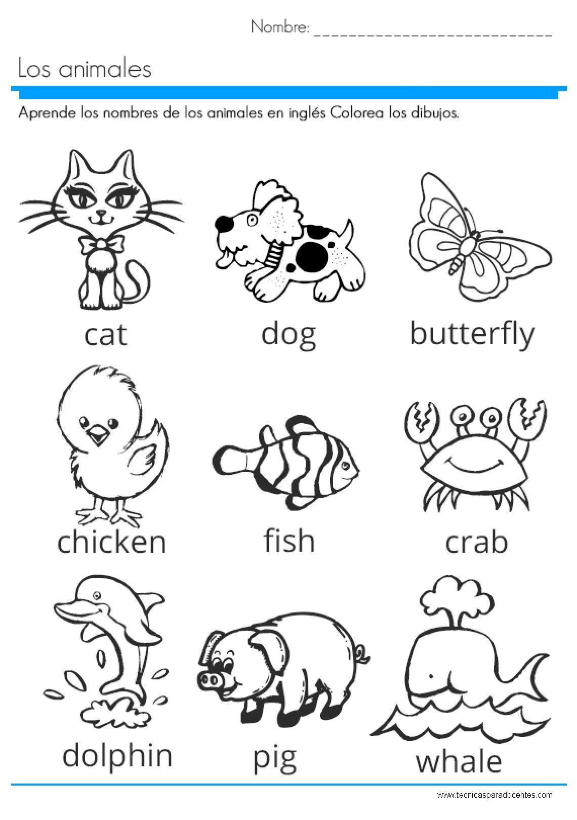 Pdf Excelente Cuadernillo De Ingles Para Ninos Ingles Basico Para Ninos Animales En Ingles Ingles Para Preescolar