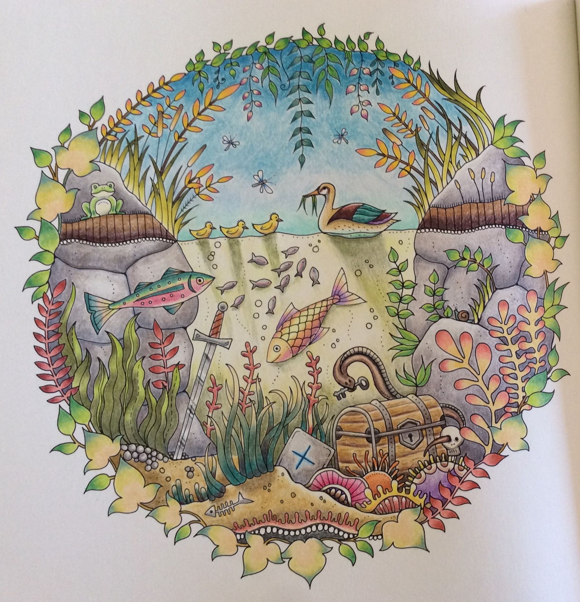 Enchanted Forest Coloring Book By Johanna Basford The Duck Pond Enchanted Forest Coloring Enchanted Forest Coloring Book Forest Coloring Book