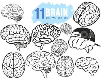 Brain Clipart Etsy Brain Vector Brain Clipart Brain Drawing