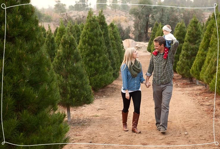 25 Creative Places To Take A Christmas Photo Shutterfly Funny Christmas Photos Outdoor Christmas Photos Christmas Tree Farm Pictures