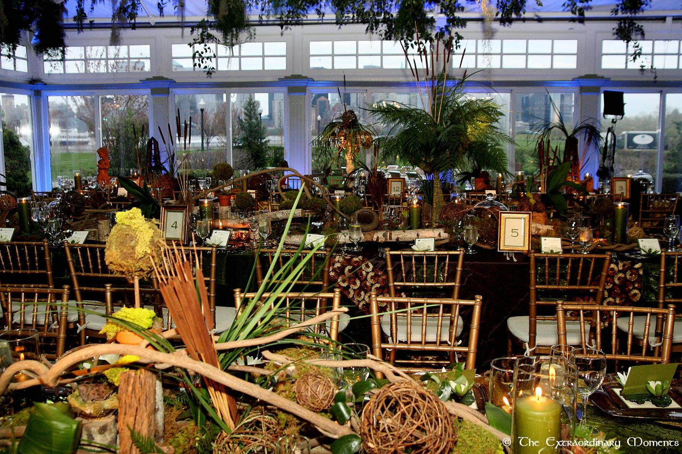 The Extraordinary Moments My Fair Wedding With David Tutera Swamp Bride