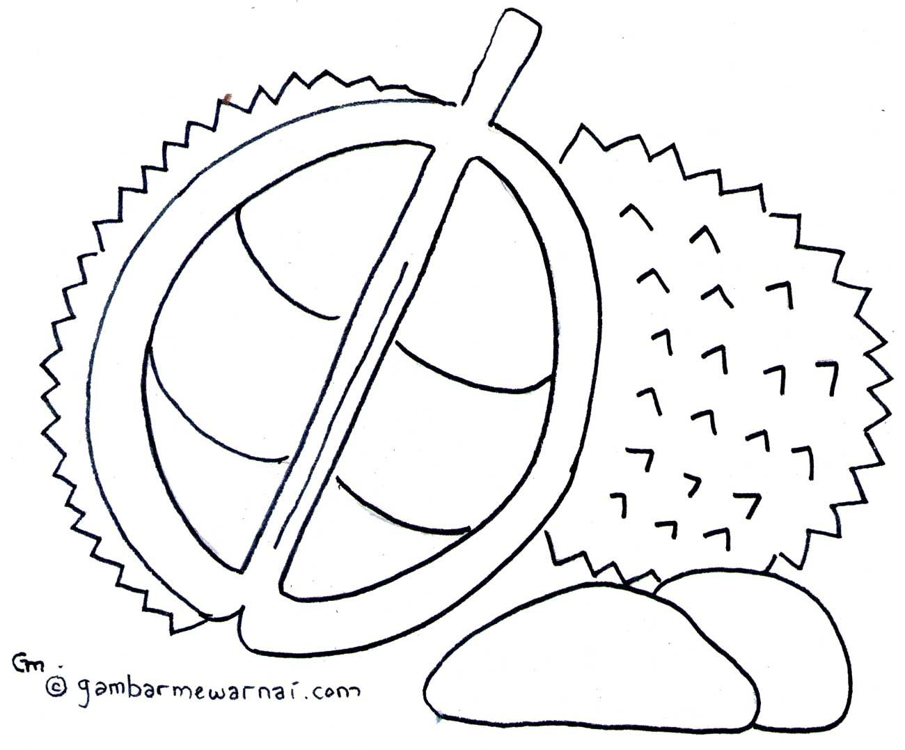 Mewarnai Buah Durian