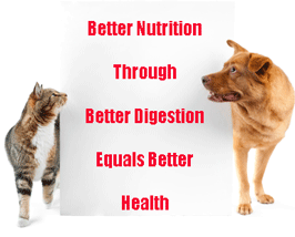 In the wild an animal's diet contains: protein, carbohydrates, fats, vitamins, minerals, probiotics and enzymes– at every meal. To keep our pets healthy and thriving, we give them the best quality pet food we can find. (For more information, see our last post, What Nutrients Do My Pets Need?) How can we make that commercially manufactured food more like their natural prey type diet? Just replace what is missing, the enzymes!
