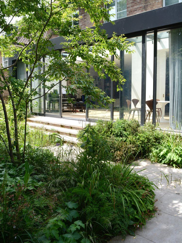 St Johns Wood Rich Landscapes Shade Garden Design Backyard Landscaping Inspiration