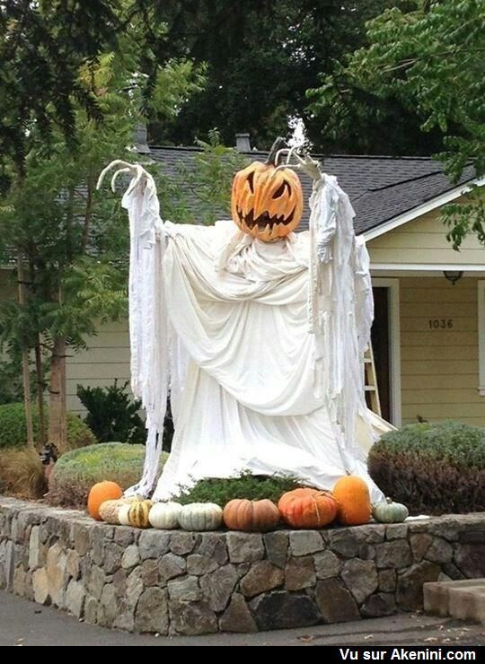 Halloween - citrouille - pumpkin Halloween chic Pinterest