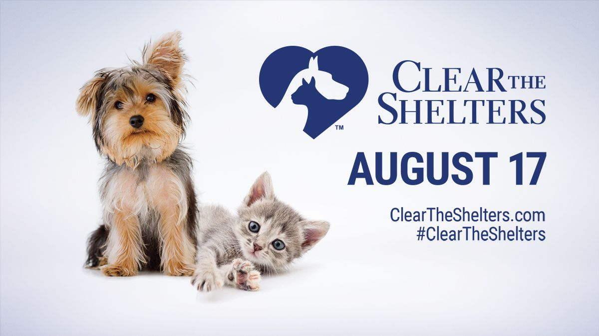 Clear The Shelters Day Saturday August 17 Adopt Don T Shop