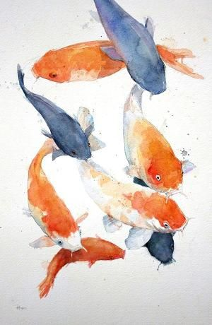 ALONGTIMEALONE: group-eight: Koi Carp. Watercolour Alex Egan by ...