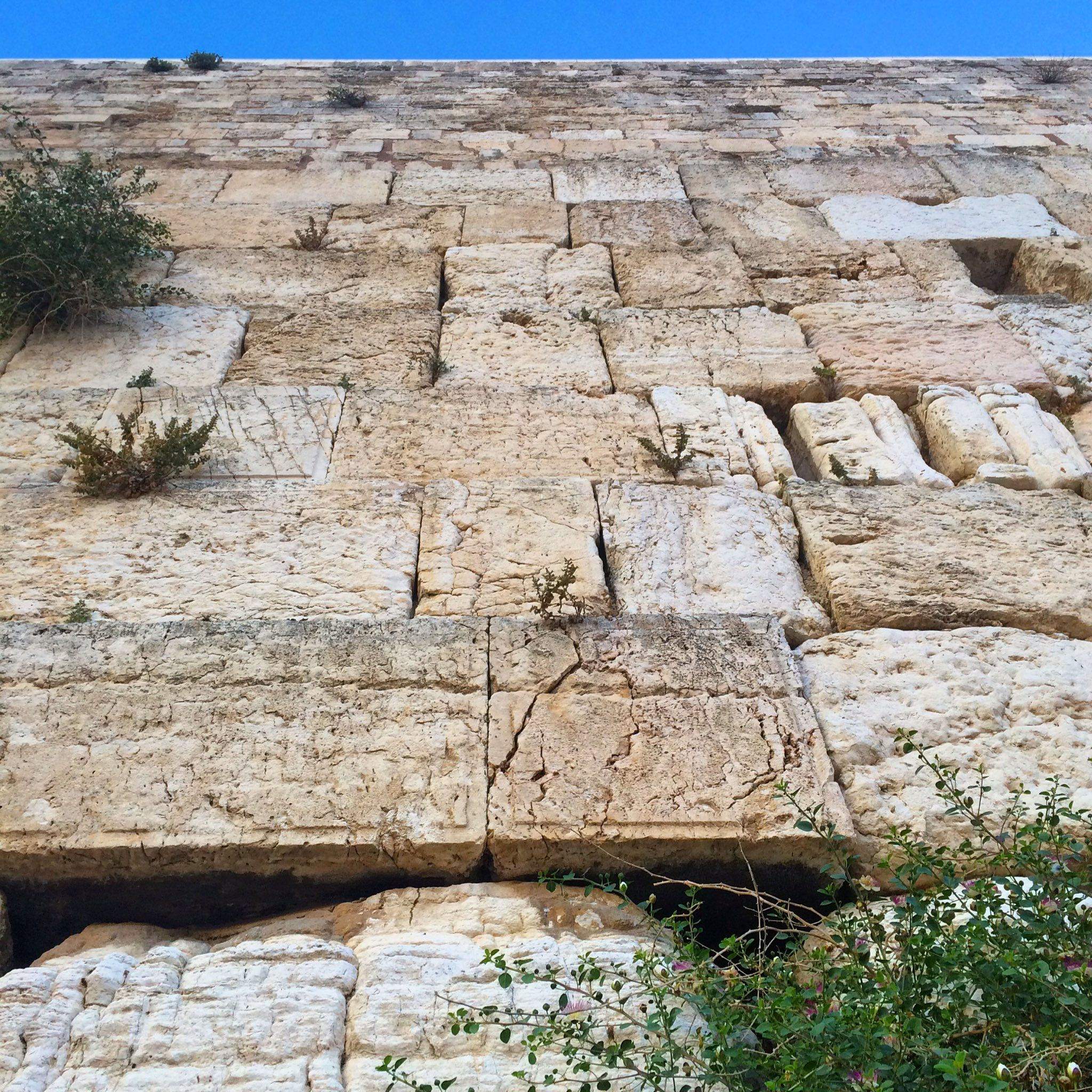 Avi MayerVerified account @AviMayer    Jerusalem Day 2017   I can't explain it, but the wall felt warm, as though it was returning some of the warmth with which it was embraced today. #JerusalemDay