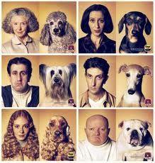 L@s Dueñ@s y sus Parecidos...con sus Mascotas.