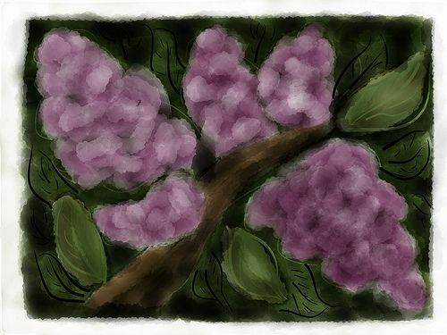 25 May 2012 - Lilacs   More experimenting with Paper FiftyThree app on iPad...