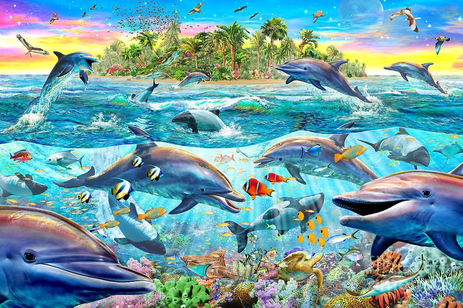 Dolphin Reef Dolphin Art Dolphins Ocean Art