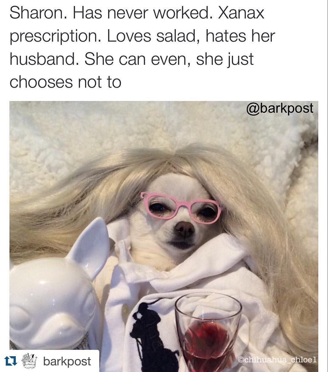 Repost barkpost with repostapp you know this woman sharon