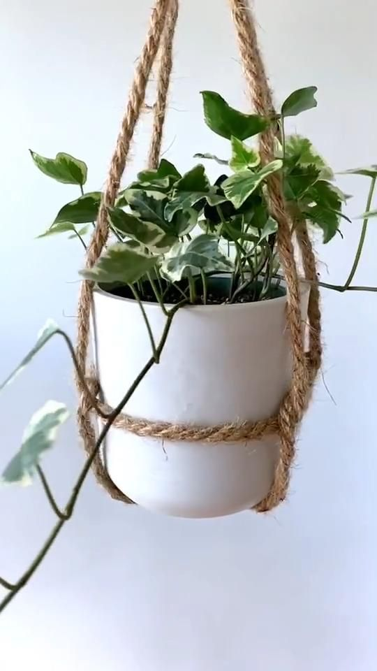 Create your own hanging plant pots