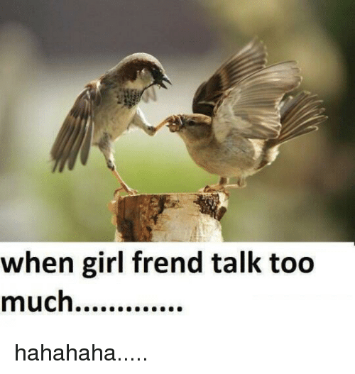 Funny Memes About Talking Too Much Funny Memes Funny Memes
