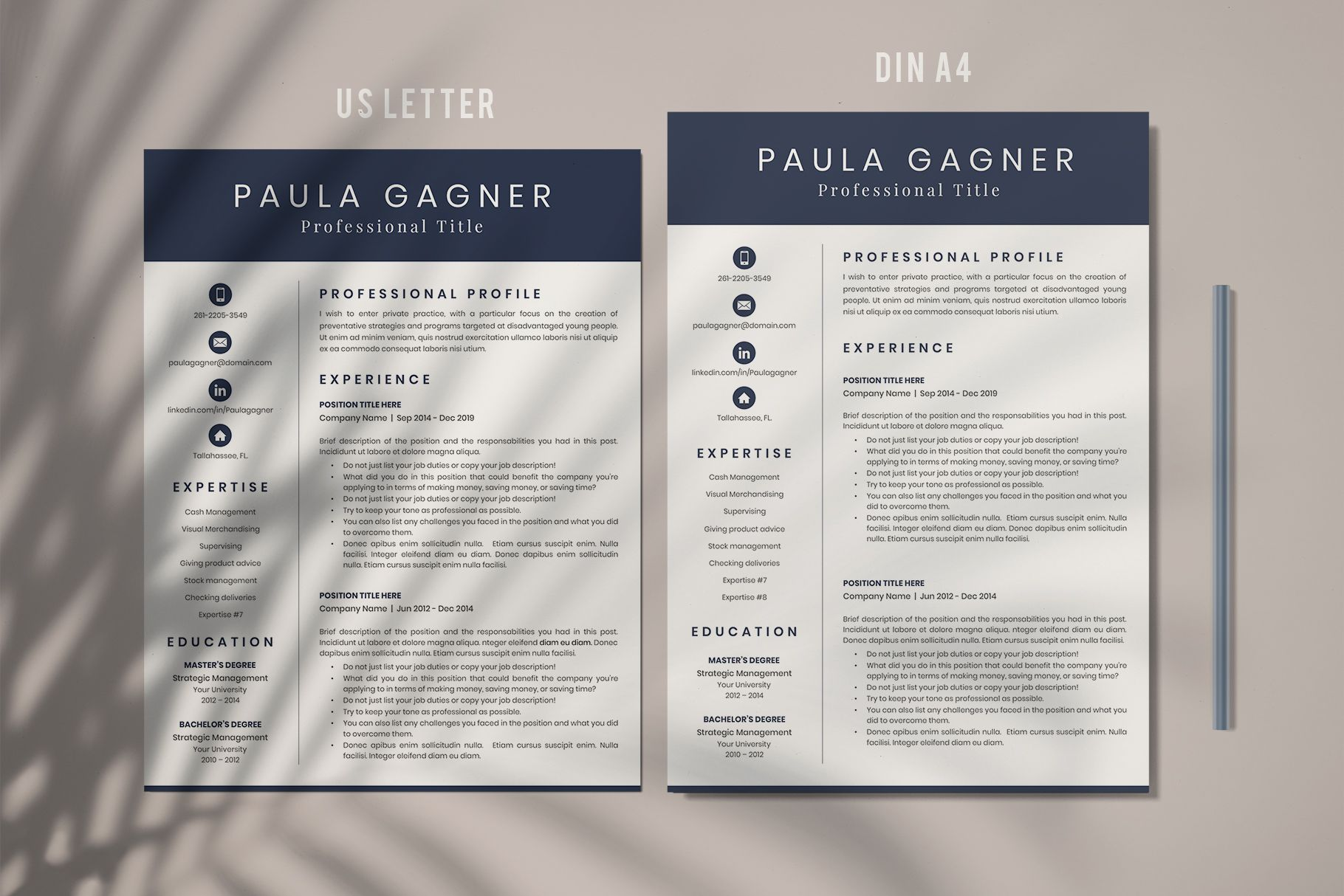 Creative Resume Format For Freshers Internship Resume Template For Ms Word And Mac Pages Simple Cv Format And