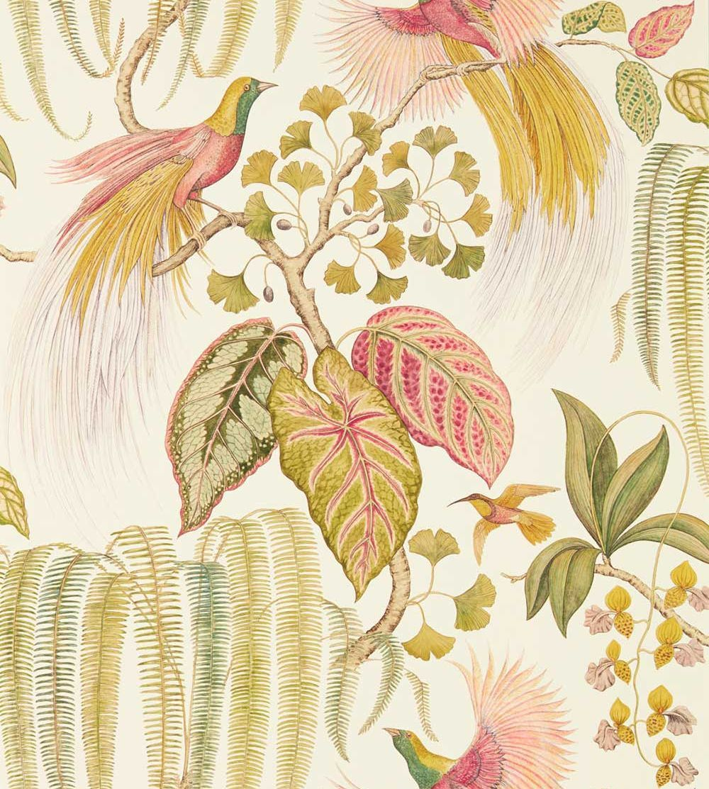 Bird Of Paradise By Sanderson Olive Wallpaper Wallpaper Direct Birds Of Paradise Mural Wallpaper Canvas Artwork