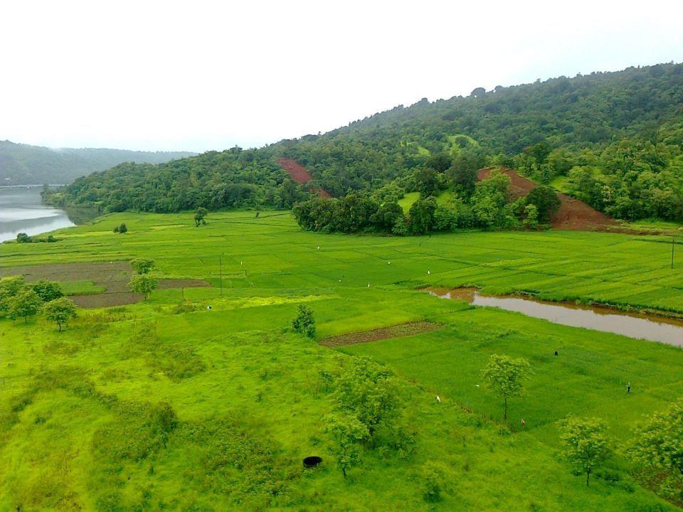 Farm..Maharashtra Oil, gas, Adani group, Golf courses