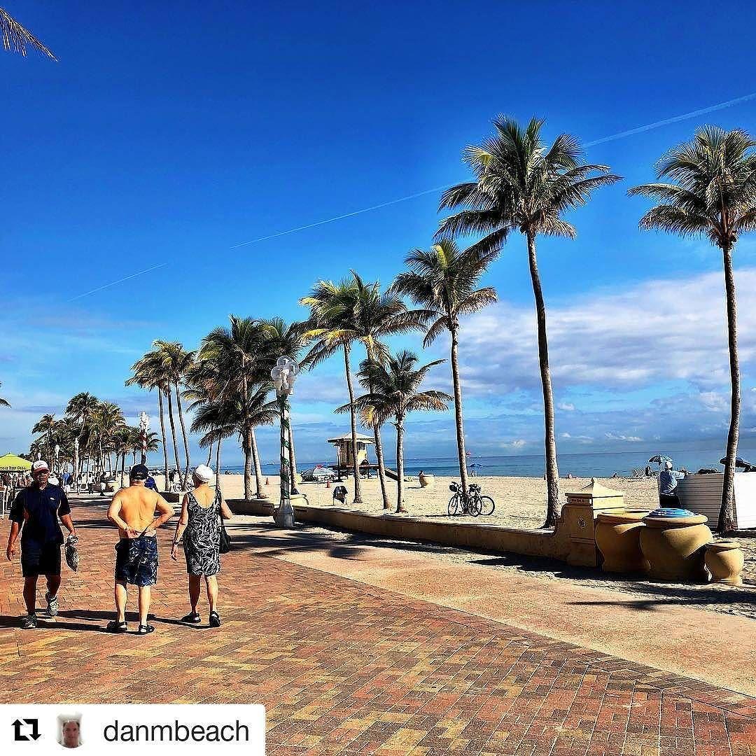 Credit to danmbeach beach palmtrees southflorida