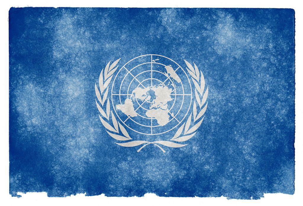 Berbagai Macam Organisasi Internasional Beserta