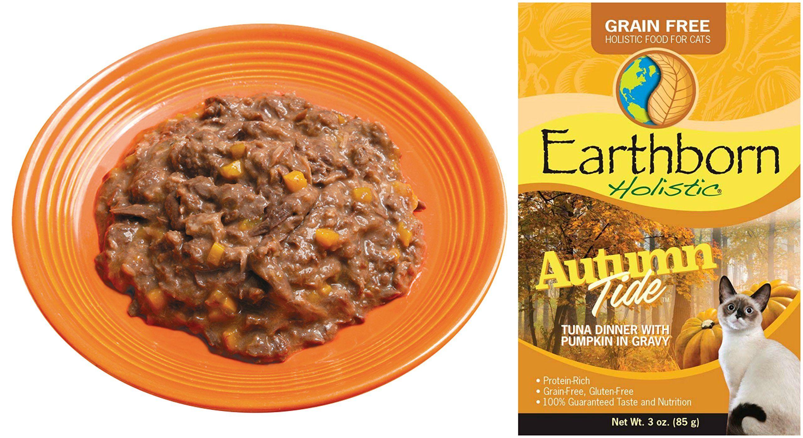 Earthborn holistic grain free cat food in gravy in 6