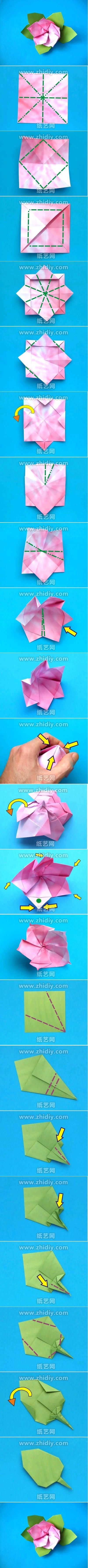 Origami Azalea Flower Folding Instructions Origami Instruction On