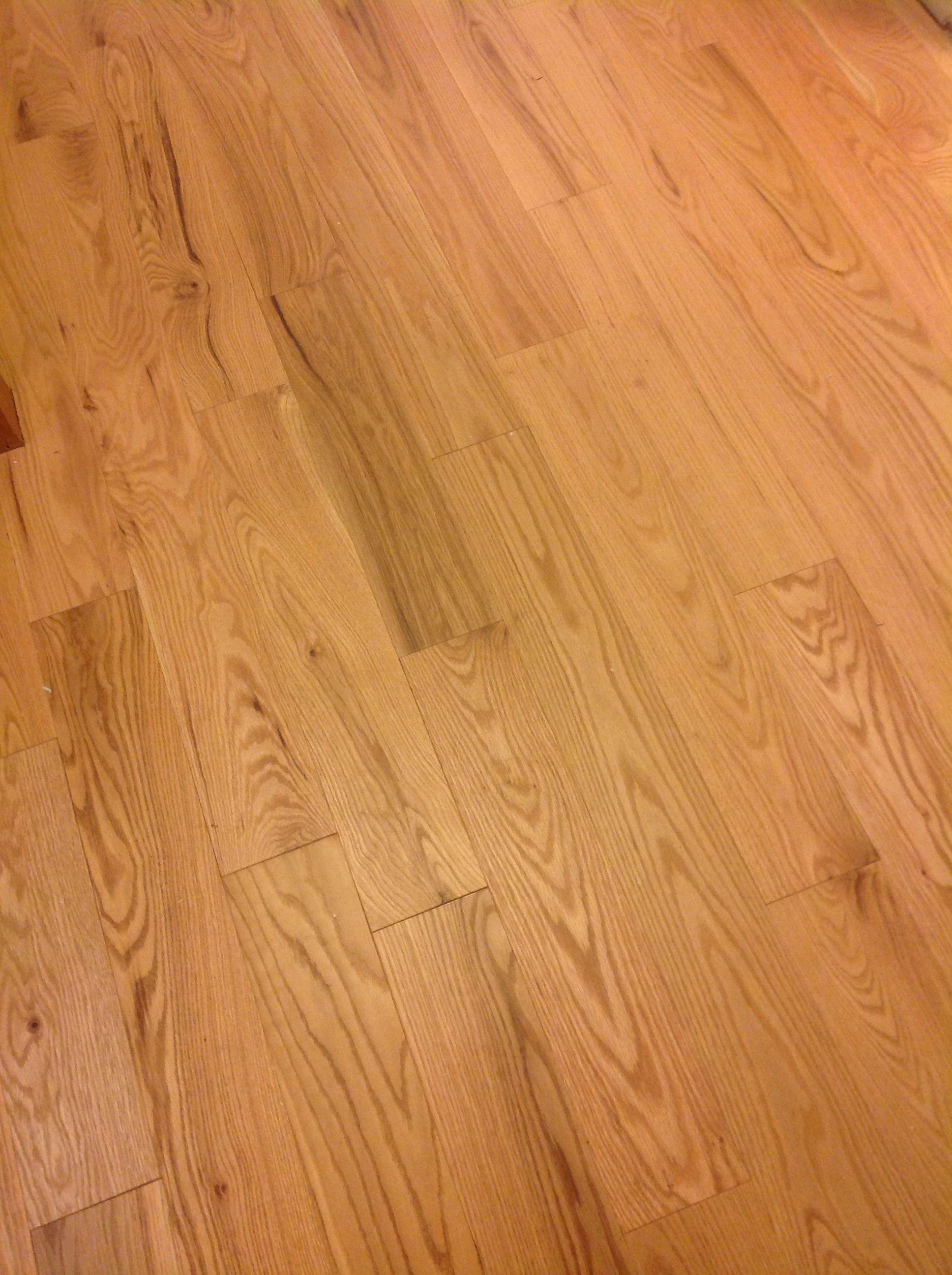 Bellawood Rustic Red Oak Matte Finish 5 Inch Hardwood Floors