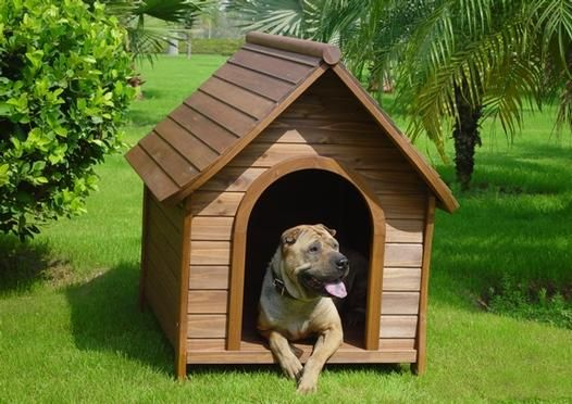Pin By Phaphon Katayanyut On Dog Training Wooden Dog Kennels Dog Kennel Dog Kennel Cover