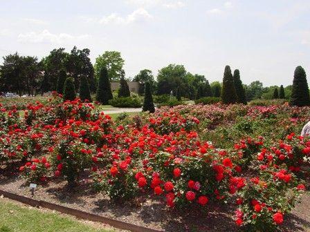 Tulsa Municipal Rose Garden Travel And Tourism Oklahoma Tourism Tourism