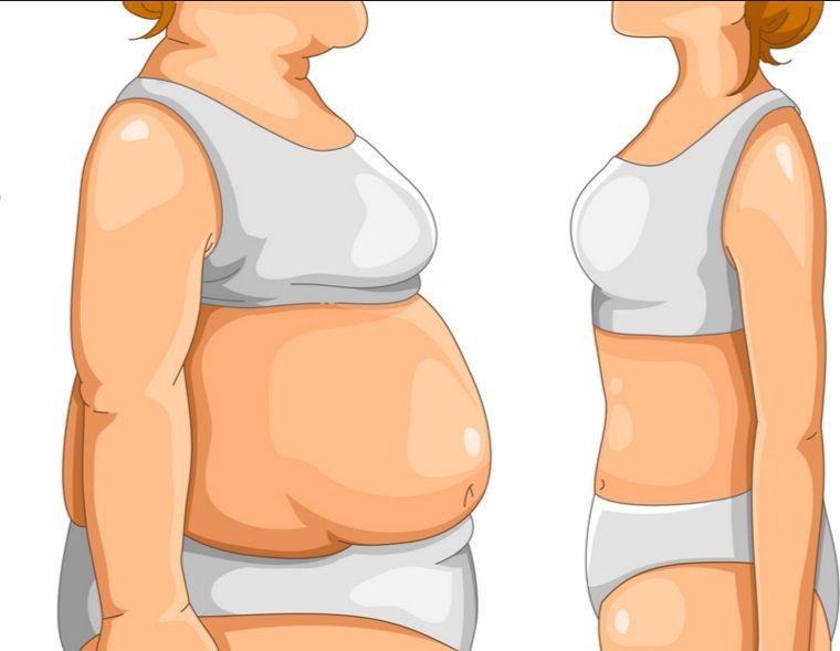 test által vi a fogyás nagyobb görbék zsírégető vélemények